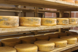 La fromagerie la ferme des epi s agriculteur fromager affineur - Cave affinage fromage electrique ...